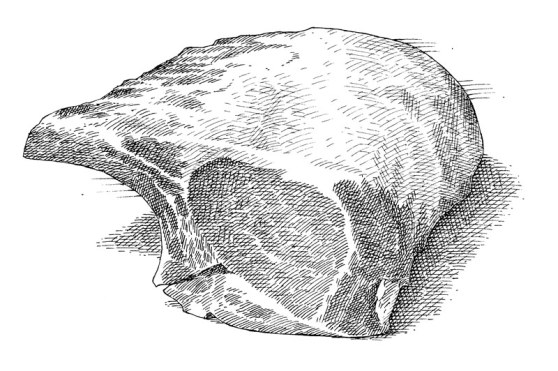 how to cut pork roast with bone after cooking